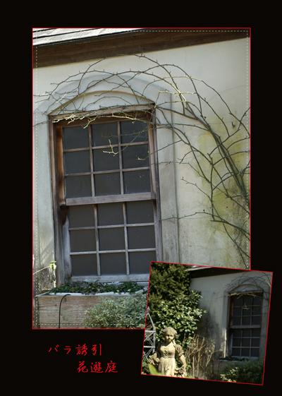 花遊庭3-3web