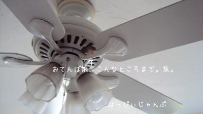 DSC01311_convert_20120902102442.jpg
