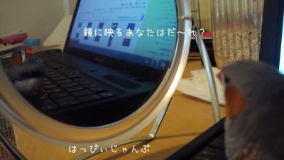 DSC02936_convert_20121005121846.jpg