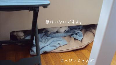 DSC04480_convert_20121120131915.jpg
