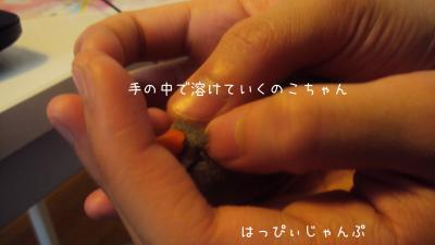 DSC06086_convert_20130101131937.jpg