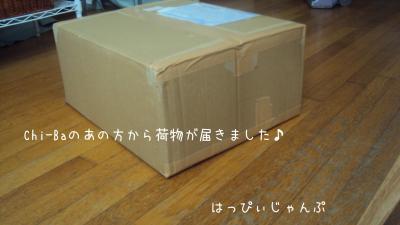 DSC06318_convert_20130107115717.jpg