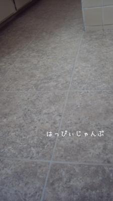 DSC06371_convert_20130108110644.jpg