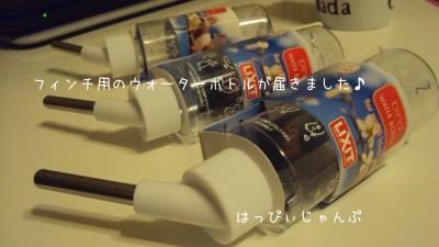 DSC06533_convert_20130110065947.jpg