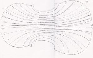 fig29.jpg