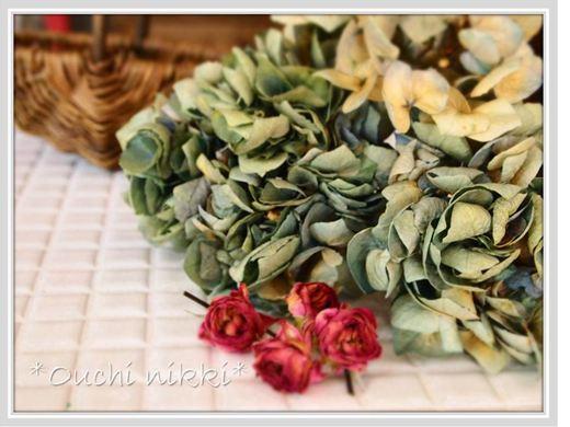 5紫陽花とバラのドライ_R
