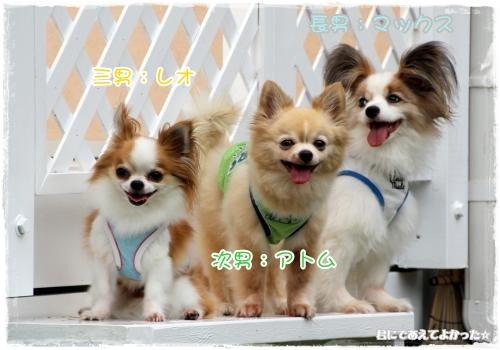 111_20120910211446.jpg