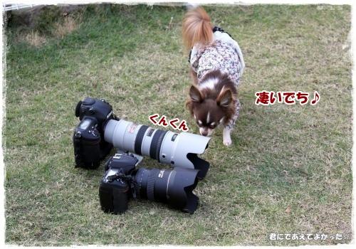 277_20121029192231.jpg