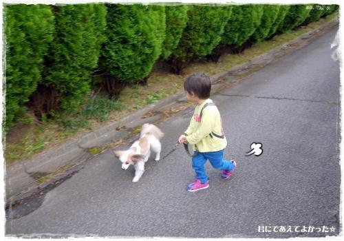 508_20121013190549.jpg