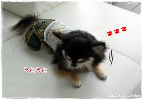 517_20120517190804.jpg
