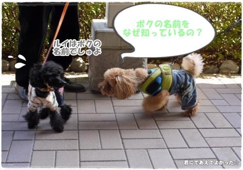 561_20121106213734.jpg