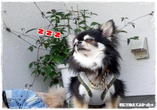 623_20120517190925.jpg