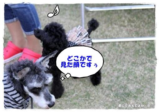 888_20121024173814.jpg