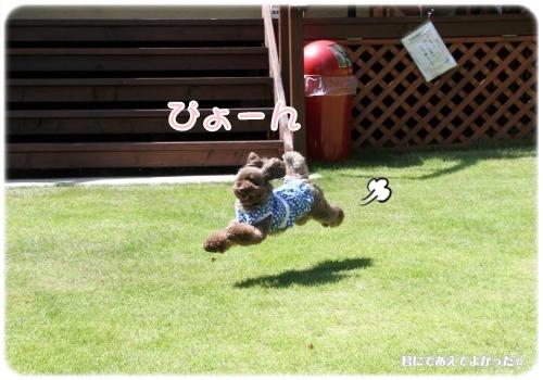 920_20120905205953.jpg