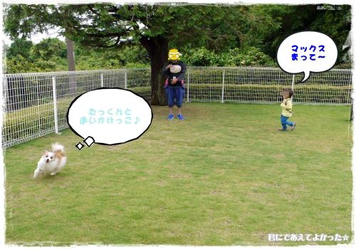 935_20120610192634.jpg