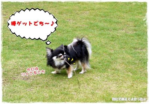 959_20120610192633.jpg