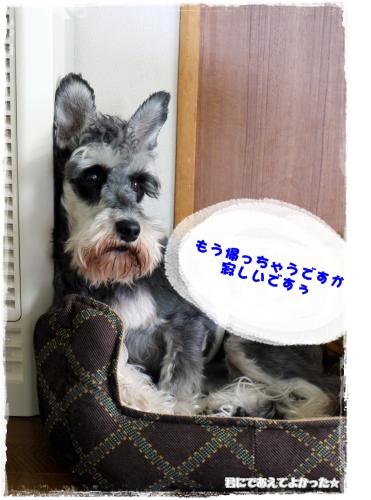 990_20120610192633.jpg