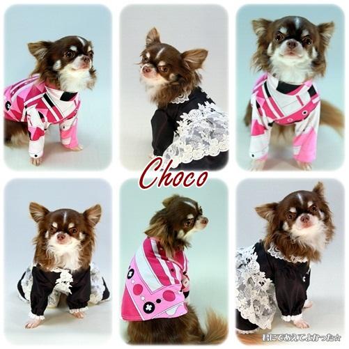 choco_20121215203937.jpg