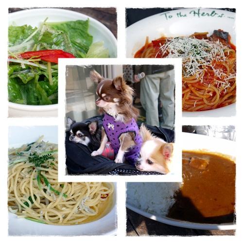 lunch_20121106213733.jpg