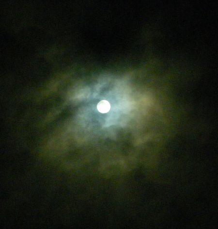 0-buru-3x.jpg