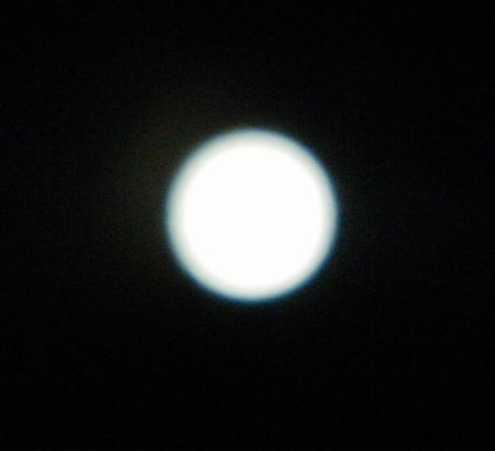 0-buru-6x.jpg