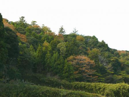0-kuro5x_20121128120116.jpg