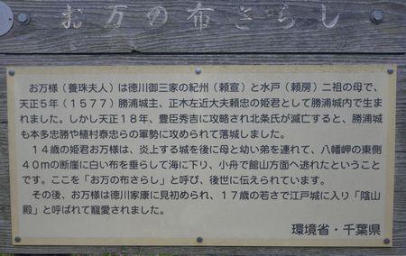 0-susuki5x.jpg