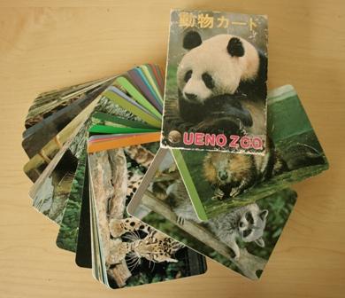 動物カード2