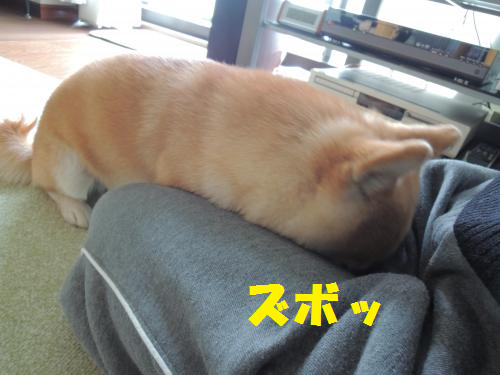 13010401.png