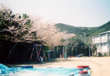 435鳥羽国崎小学校4