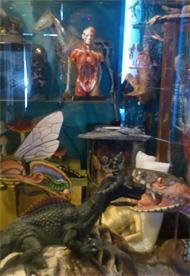 怪しい博物館2F7