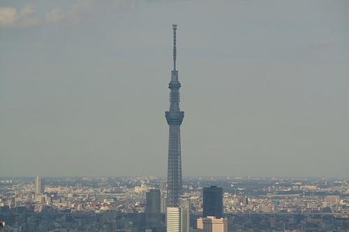 12東京タワー7