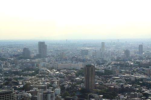 12東京タワー14