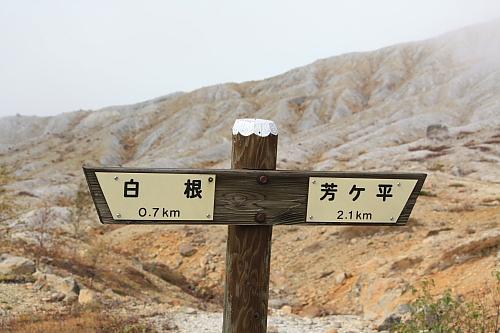 12芳ヶ平7
