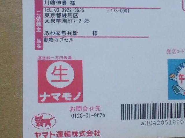 CA3I0010_20120802000230.jpg