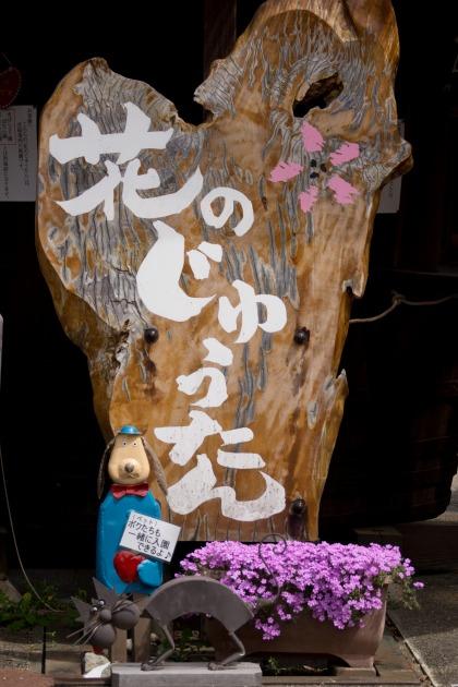 花のじゅうたん-003