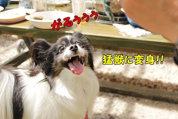 ついに顔出し! (^_^)v ~オフ会レポート番外編~-001