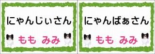 にゃんじぃさん-horz