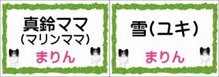 真鈴ママ-horz
