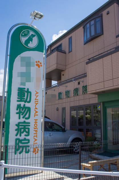 検査入院-001