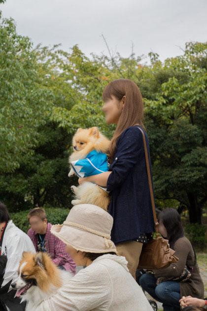 サザオフ2012(その4)【自己紹介タイム】-015