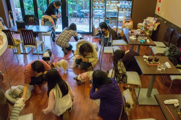大阪城公園オフ会1 ~カフェに集合♪~-002