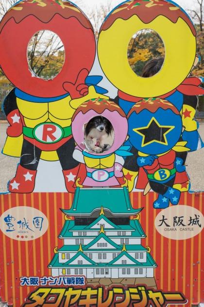 大阪城公園オフ会10 ~ 女子高生にモテモテ~♪ ~-006
