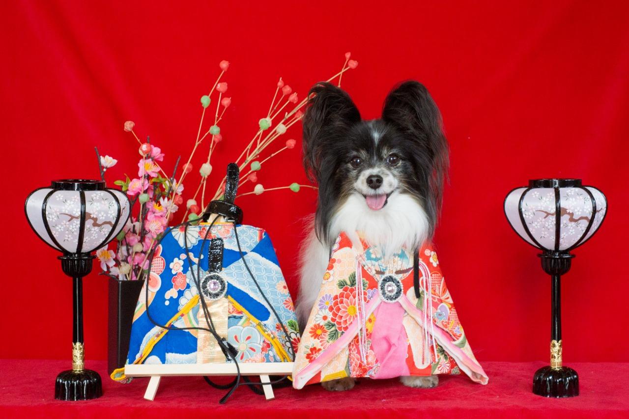「ぱんでぶーび」でひな祭り-001