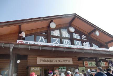 basuta-minaru-hoonoki2013.jpg