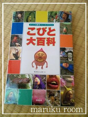 2012.コッコお誕生日(兄家