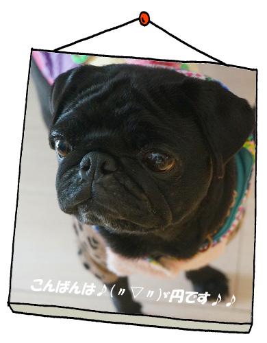 円トップ1.21.