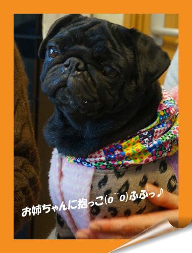 お姉ちゃんに抱っこ1.21.円_edited-1