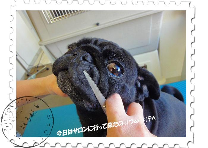 円トップサロン