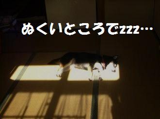 002_convert_20121231172831.jpg